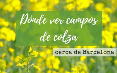 Dónde ver campos de Colza cerca de Barcelona
